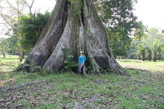 Excursiones Especializadas En Leticia Amazonas Colombia